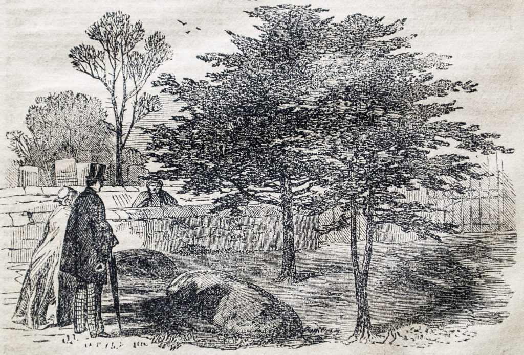 An engraving showing a grave under a tree with a couple stood looking at it.